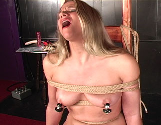 Titty twister  kaitlynn endures a long and painful nipple anguished session. Kaitlynn endures a long and painful nipple anguished session